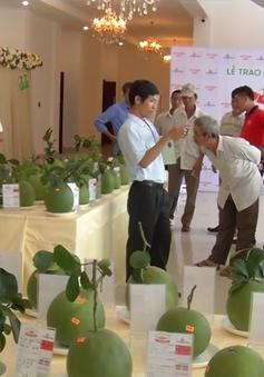 500 nông dân tham dự cuộc thi trái cây ĐBSCL