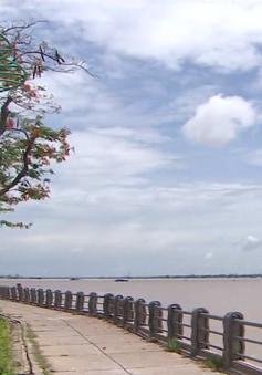 Hiệu quả dự án kè chống sạt lở ở TP Sa Đéc, Đồng Tháp