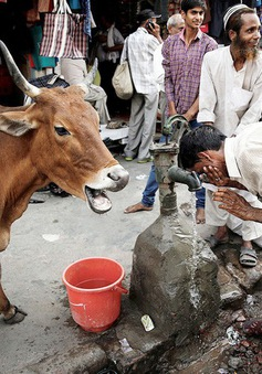 Ấn Độ đối mặt với khủng hoảng nước nghiêm trọng nhất lịch sử