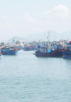 Ngư dân bị lừa khi thuê lao động đi biển