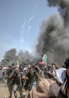 Hội đồng Bảo an LHQ thảo luận tình hình Israel - Palestines