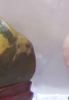 Thành lập Hội đá cảnh, đá phong thủy tại Bà Rịa - Vũng Tàu