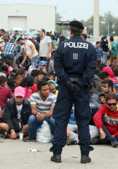 Áo diễn tập ngăn người nhập cư trên biên giới