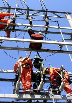 Đảo Cô Tô có điện trở lại
