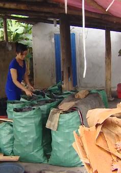 Phát triển bền vững làng nghề tự phát - Bài toán khó với nhiều địa phương
