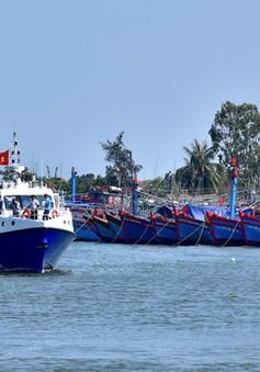 Quảng Ngãi: Điều 12 tàu siêu, cao tốc đưa hàng nghìn du khách kẹt ở đảo Lý Sơn vào bờ