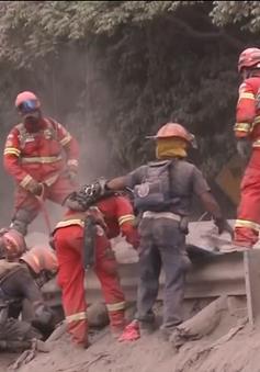 Núi lửa ở Guatemala: Khó cứu gần 200 người còn mất tích