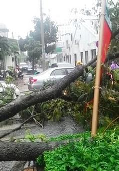 Mưa lớn gây thiệt hại tại TP Cần Thơ