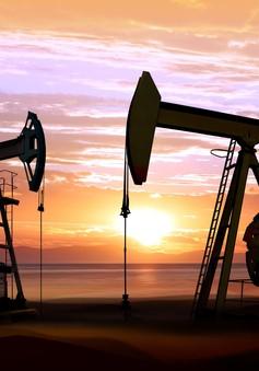 Xuất khẩu dầu mỏ của Iran sẽ giảm đáng kể trong tháng 8/2018