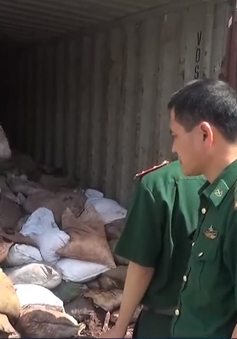 Hải Phòng phát hiện gần 100 tấn chất thải nguy hại