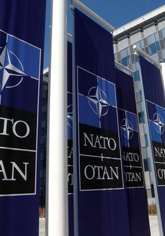 Khai mạc Hội nghị Thượng đỉnh NATO