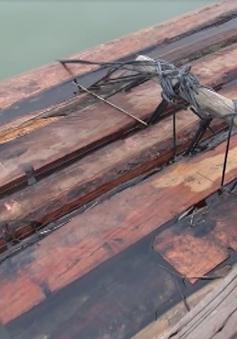 Quảng Nam gia tăng tình trạng vận chuyển gỗ lậu đường sông
