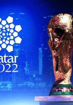 World Cup 2022 sẽ diễn ra vào mùa đông