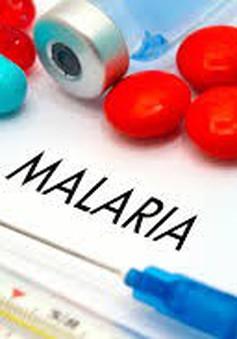 Brazil phát triển phân tử tổng hợp cho thuốc điều trị bệnh sốt rét