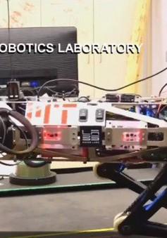 Robot cứu hộ thế hệ mới