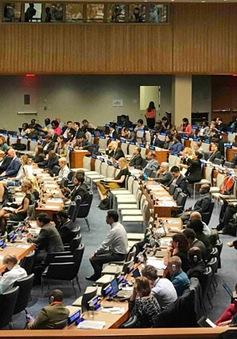 Việt Nam trình bày Báo cáo Quốc gia Tự nguyện về thực hiện các Mục tiêu Phát triển bền vững