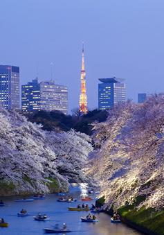 Kỳ thi Du học Nhật Bản đợt 2 năm 2018 và học bổng của tổ chức Jasso