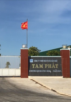 Quảng Bình: Tạm đình chỉ nhà máy chế biến thức ăn gia súc gây ô nhiễm môi trường