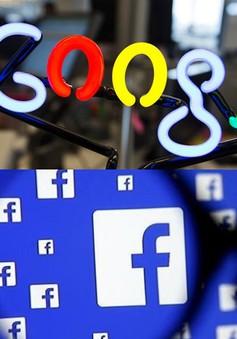 Cục Thuế TP.HCM khẳng định tìm cách thu thuế Google, Facebook