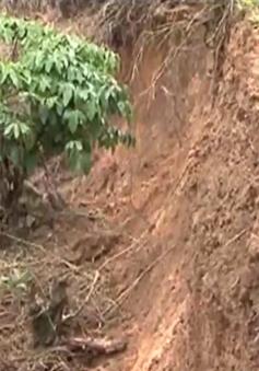 Lâm Đồng bị ảnh hưởng do mưa lũ