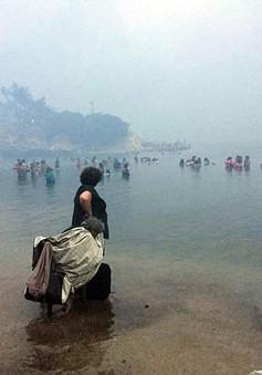 Người dân Athens tháo chạy ra biển tránh đám cháy kinh hoàng làm 200 người thương vong