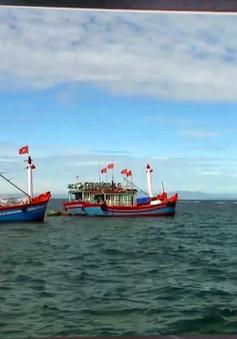 Không phát hiện tàu cá Việt Nam đánh bắt trái phép tại Australia