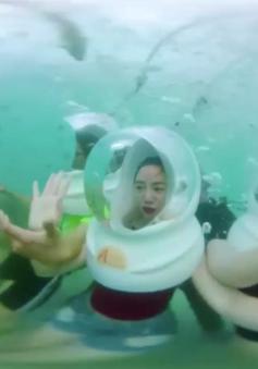 Đi dạo dưới lòng đại dương ngắm san hô tuyệt đẹp tại Nha Trang