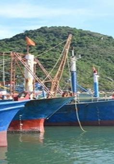 Bình Định sẽ hỗ trợ ngư dân khởi kiện nếu doanh nghiệp chây ì hỗ trợ sự cố tàu vỏ thép