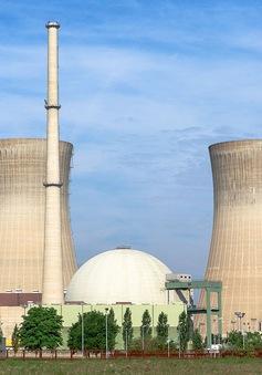 Ai Cập sẽ xây dựng nhà máy điện hạt nhân trong vòng 2 năm tới