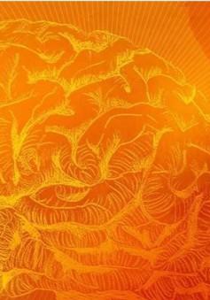 Tìm ra cách ngăn chặn lão hóa mạch não, cải thiện trí nhớ
