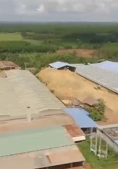 Bình Phước: 11 lò gạch thủ công bủa vây một xã