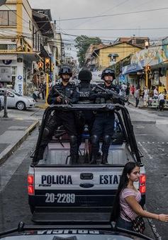 Mỹ lo ngại trước những chính sách mới của Mexico trong cuộc chiến chống ma túy?