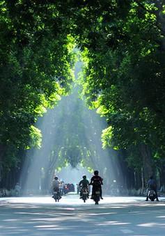 Những không gian xanh tránh nóng ngày hè ở Hà Nội