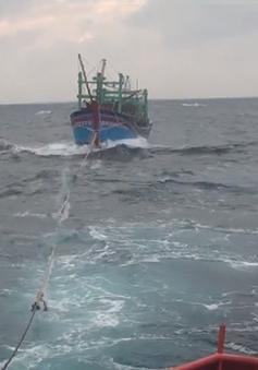Cứu nạn thành công 9 ngư dân gặp nạn trên biển