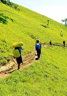 Hoàn tất lắp đặt các biển báo trên tuyến Tà Năng - Phan Dũng