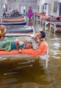 Ấn Độ tiếp tục chìm trong mưa lũ