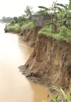 Sạt lở nghiêm trọng ven sông Đồng Nai do khai thác cát trái phép