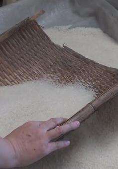 Khó tìm thấy thương hiệu gạo Việt Nam tại Trung Quốc