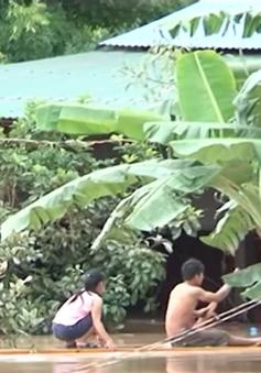 Kon Tum triển khai nhiều giải pháp hỗ trợ người dân vùng ngập lụt