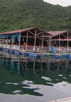 Phú Yên: Kéo dài tình trạng bè du lịch hoạt động trái phép trên Vịnh Vũng Rô