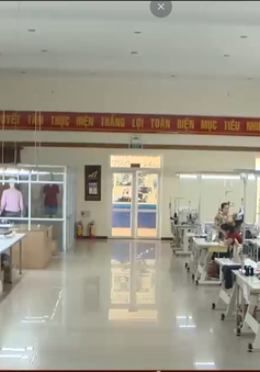 Doanh nghiệp xuất khẩu Đà Nẵng gặp khó