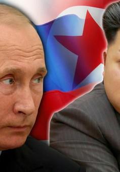 Nga muốn sớm tổ chức cuộc gặp với Triều Tiên