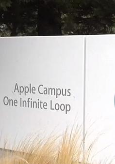 Apple kê khai trụ sở làm việc có giá chỉ 200 USD để được giảm thuế