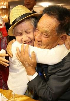 Nghịch cảnh của những vòng đoàn tụ gia đình Hàn Quốc - Triều ly tán