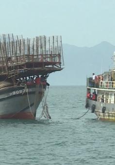 Lai dắt tàu cá bị nạn cùng 53 ngư dân vào bờ an toàn