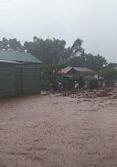Huyện Nậm Pồ (Điện Biên) sơ tàn gần 1.000 người do lũ