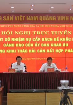 """Triển khai tổng thể các giải pháp nhằm tháo gỡ """"thẻ vàng"""" của EC cho thủy sản Việt Nam"""