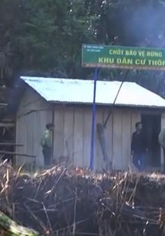 Quảng Nam lập chốt bảo vệ rừng