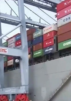 Dự báo kinh tế Việt Nam sẽ tăng trưởng mạnh