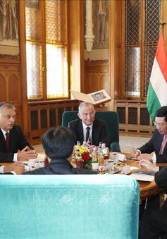 Việt Nam luôn coi trọng quan hệ hữu nghị truyền thống và hợp tác toàn diện với Hungary